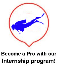 divemaster and diving instructor internship training